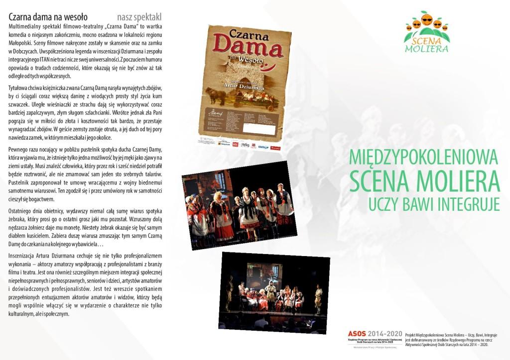 msm2-podglad-page-001